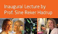 Sine Reker Hadrup - Inaugural Lecture