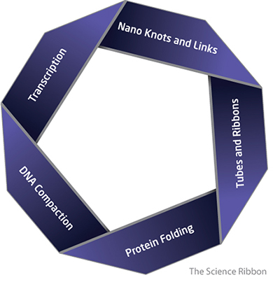 The science ribbon