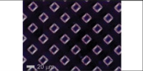 Hydrophilically contrasted nanoporous polymer film prepared by UV 365 nm lithography with a 20 micron x 20 micron square mesh mask.